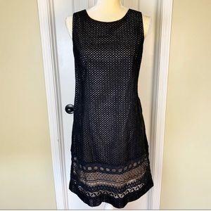 NWT Loft Black Eyelet Lace Sheath Dress Size 10